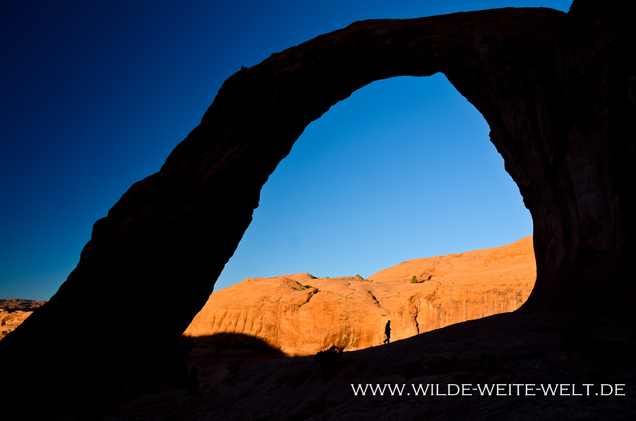 Corona Arch - Canyonlands - Potash Road - Moab - Utah