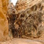 Willis-Creek-Skutumpah-Road-Grand-Staircase-Escalante-National-Monument-Utah-12 Willis Creek und Temple Arch