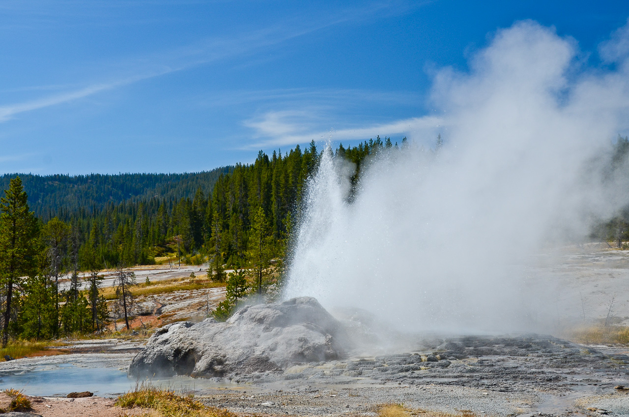 Minute Man Geyser - Shoshone Geyser Basin - Yellowstone Nationalpark - Wyoming