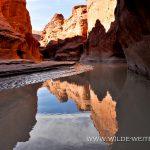 Paria-Canyon-Narrows-Paria-Canyon-Wilderness-Utah-25 Paria Canyon