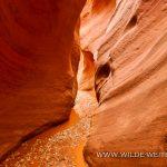 Wire-Pass-to-Buckskin-Gulch-Paria-Canyon-Wilderness-Utah-2-150x150 Wire Pass - Buckskin Gulch