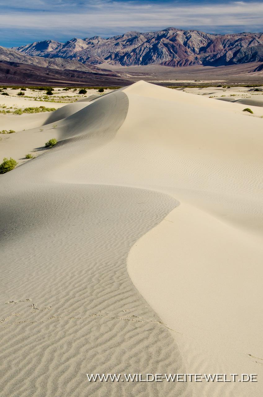 Saline-Valley-Sand-Dunes-Saline-Valley-Death-Valley-Nationalpark-Californien-56 Saline Valley Dunes [Death Valley National Park]