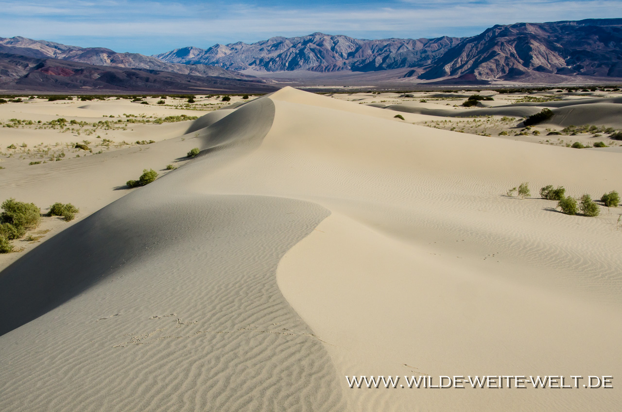 Saline Valley Sand Dunes - Saline Valley, Death Valley Nationalpark - Californien