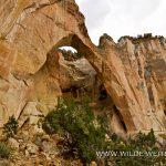 La-Ventana-Arch-El-Malpais-NM-Grants-New-Mexico-12 La Ventana Arch