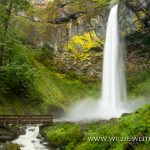 Elowah Falls - Columbia River Gorge, Oregon