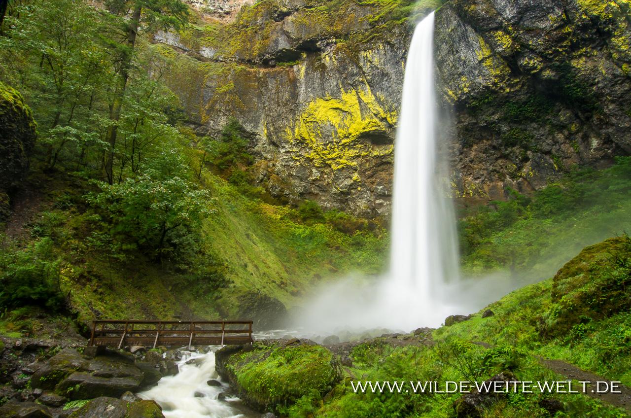 Elowah Falls - Columbia River Gorge, Oregon