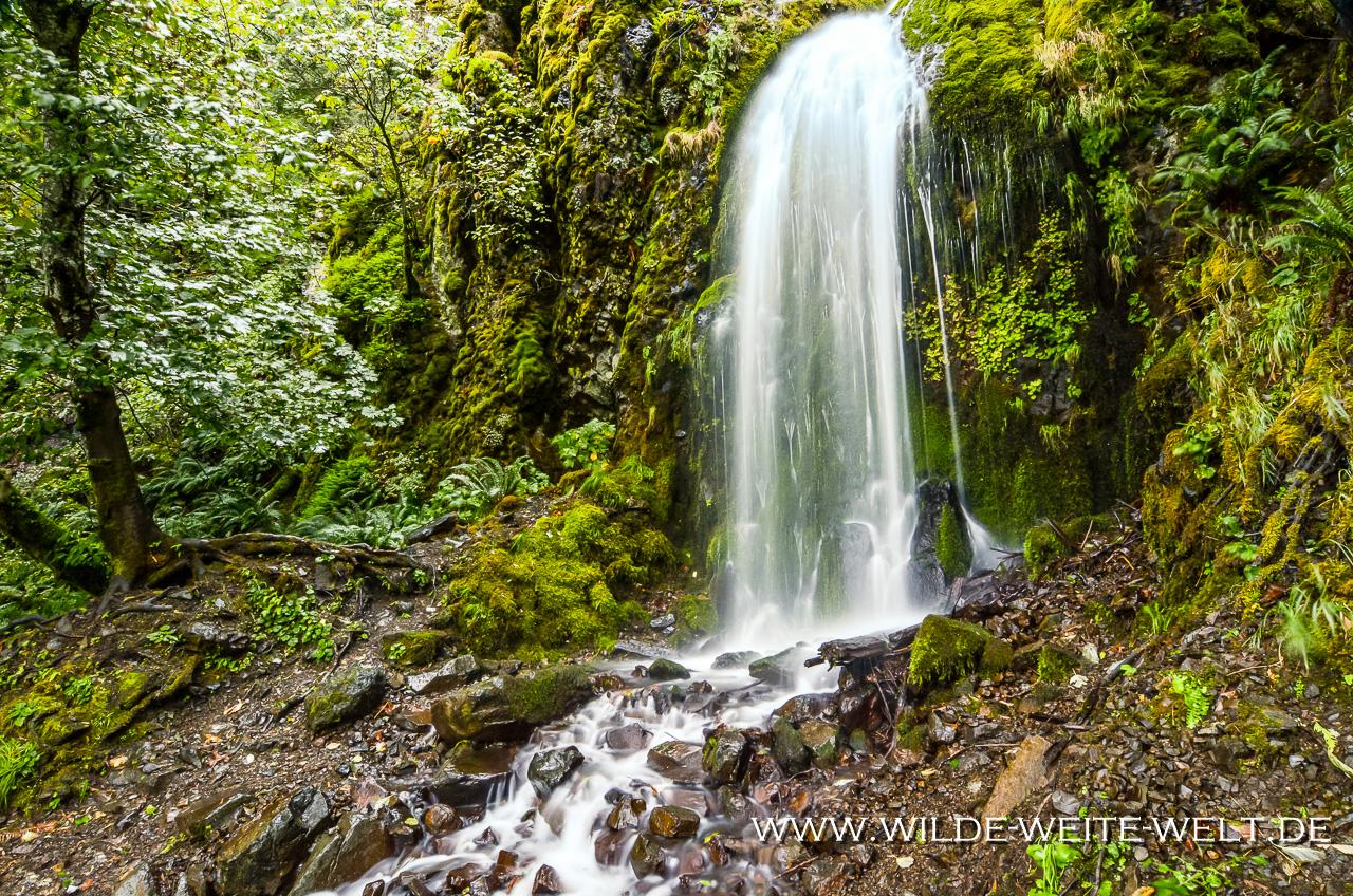 Lancester Falls, Columbia River Gorge, Oregon