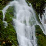 Madison-Falls-Elwha-Valley-Olympic-Nationalpark-Washington Madison Falls [Olympic National Park]