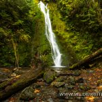 Madison Falls - Elwha Valley, Olympic Nationalpark, Washington