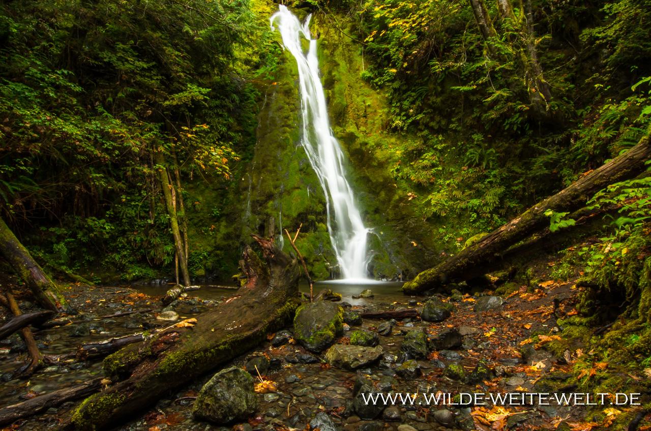 Madison Falls - Elwha Valley, Olympic Nationalpark, Washington