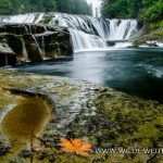 Middle Lewis River Falls - Lewis River Recreation Area, Gifford-Pinchot National Forest, Washington