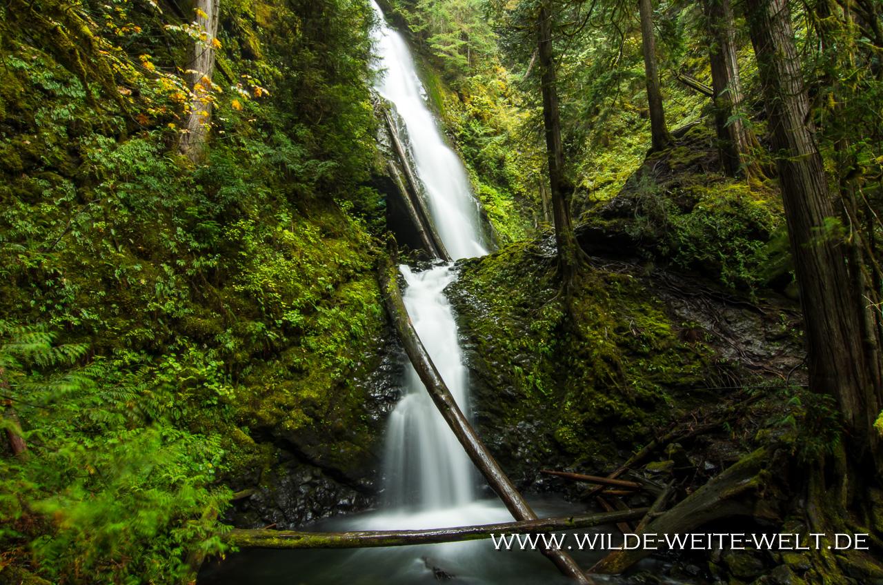 Murhut Falls - Olympic National Forest, Brinnon, Washington