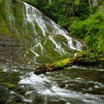 Walupt-Creek-Falls-Gifford-Pinchot-National-Forest-Packwood-Washington-3 Walupt Creek Falls [Gifford Pinchot National Forest]