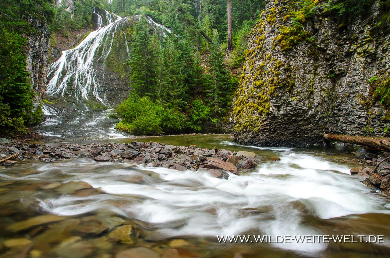 Walupt Creek Falls - Gifford-Pinchot National Forest, Packwood, Washington