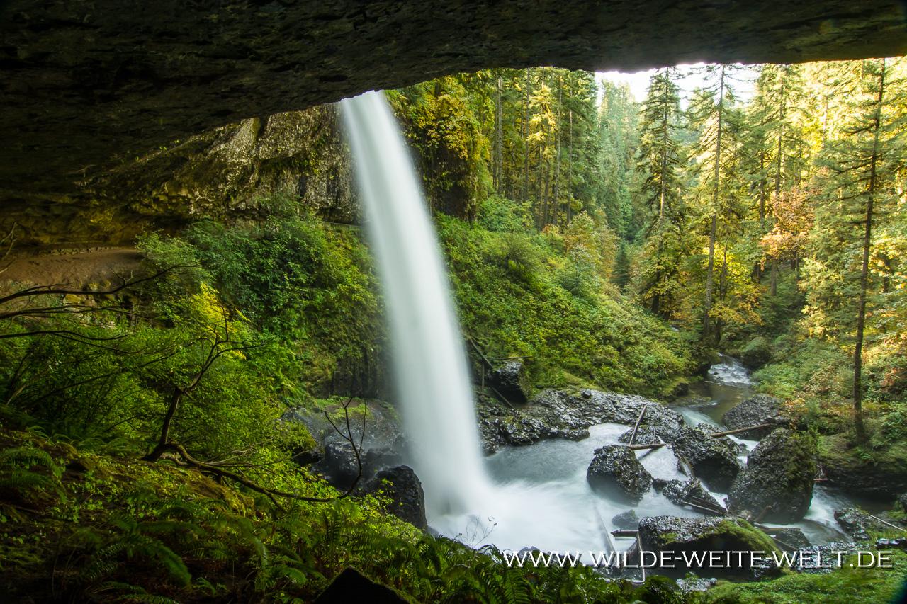 North Falls - Silver Falls State Park, Oregon