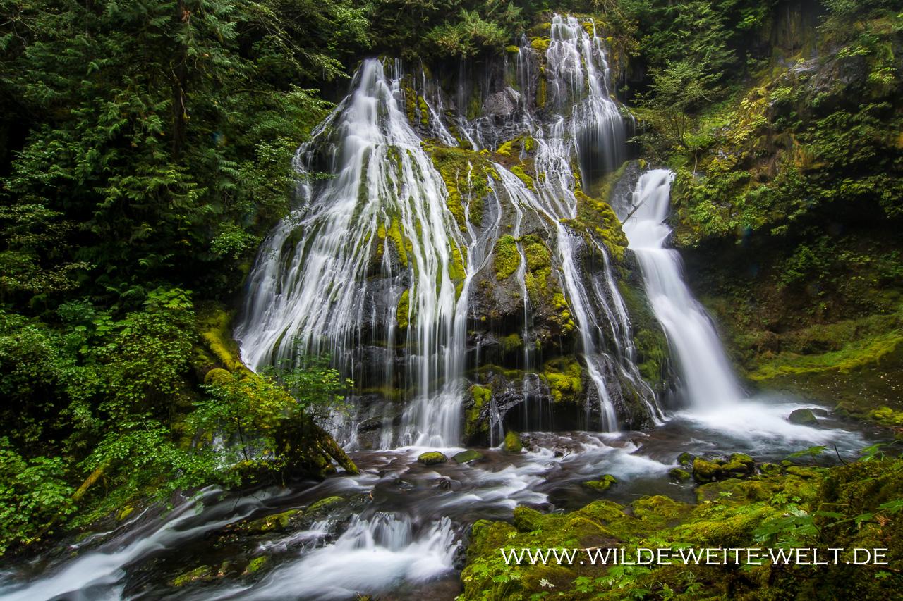 Panther Creek Falls - Gifford-Pinchot National Forest, Washington