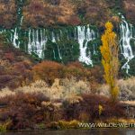Niagara-Springs-Thousand-Springs-Scenic-Byway-Hagerman-Idaho Niagara Springs [Thousand Springs Scenic Byway]