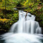 Whitehorse-Falls-Umpqua-National-Forest-Oregon Whitehorse Falls [North Umpqua River]