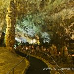 Carlsbad Caverns - Big Room Tour, Carlsbad Caverns Nationalpark, New Mexico