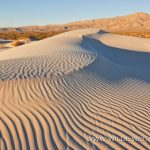 Gypsum Dunes - Guadelupe Mountains Nationalpark, Texas