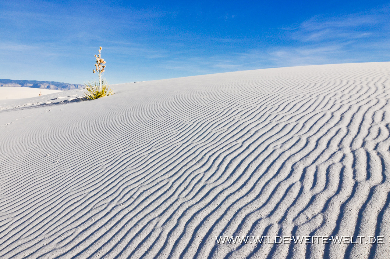 White Sands National Monument - Alamogordo, New Mexico