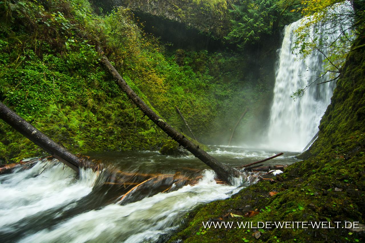 Ecola Falls - Columbia River Gorge, Oregon