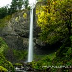 Latourell Falls - Columbia River Gorge, Oregon
