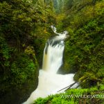Oneonta Falls - Columbia River Gorge, Oregon