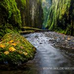 Oneonta Gorge - Columbia River Gorge, Oregon