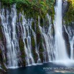 Burney-Falls-McArthur-Burney-Falls-State-Park-California-2 Burney Falls