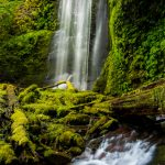 Clover-Falls-Little-River-Area-Umpqua-National-Forest-Oregon-3 Clover Falls [Lake in the Woods]