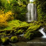 Clover Falls - Little River Area, Umpqua National Forest, Oregon