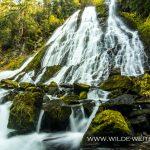 Diamond-Creek-Falls-Willamette-National-Forest-Oregon-3 Diamond Creek Falls [Willamette River}