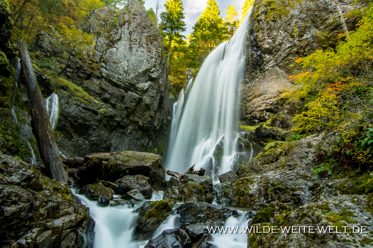 Henline Falls - Opal Creek Wilderness, Willamette National Forest, Oregon