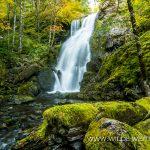 Jerry-Falls-Opal-Creek-Wilderness-Willamette-National-Forest-Oregon-5 Jerry Falls [Henline Creek]