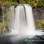Koosah-Falls-McKenzie-River-Willamette-National-Forest-Oregon Koosah Falls [McKenzie River]