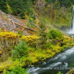 Lemolo-Falls-Umpqua-National-Forest-Oregon-4 Lemolo Falls [Lemolo Lake]