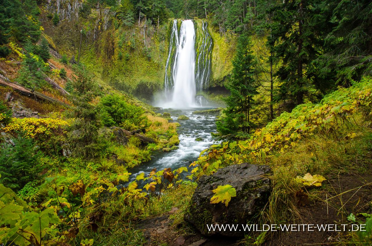 Lemolo Falls - Umpqua National Forest, Oregon
