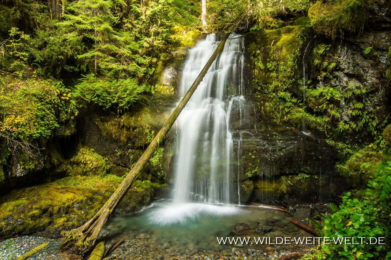 Lower Parker Falls - Row River Area, Umpqua National Forest, Oregon