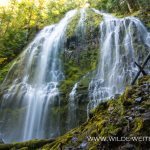 Proxy-Falls-Three-Sisters-Wilderness-Willamette-National-Forest-Oregon-7 Proxy Falls [McKenzie River]