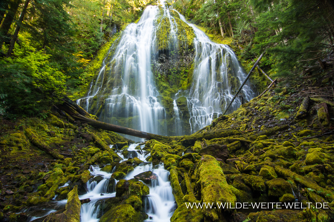 Proxy Falls - Three Sisters Wilderness, Willamette National Forest, Oregon