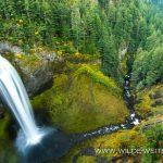 Salt-Creek-Falls-Willamette-National-Forest-Oregon-4 Salt Creek Falls [Willamette River}