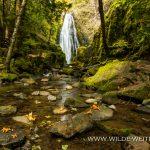 Susan Creek Falls - Umpqua National Forest, Oregon