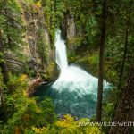 Toketee Falls - Umpqua National Forest, Oregon
