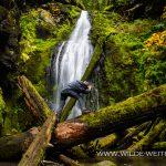 Trestle-Creek-Falls-Row-River-Area-Umpqua-National-Forest-Oregon Trestle Creek Falls [Row River]