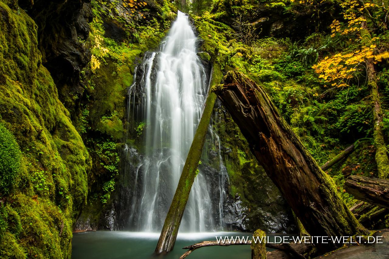 Trestle Creek Falls - Row River Area, Umpqua National Forest, Oregon