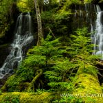 Tributary Falls - Little River Area, Umpqua National Forest, Oregon