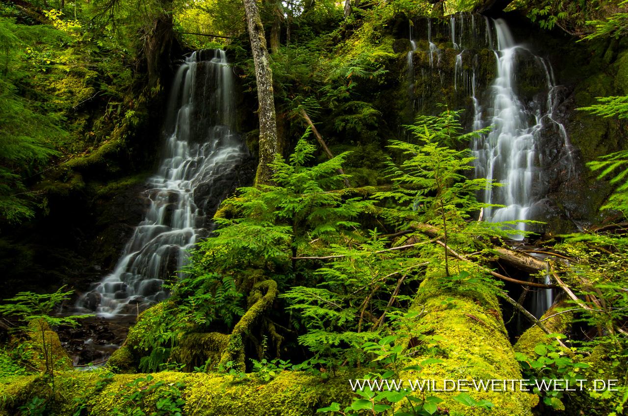 Tributary Falls - Little River Area, Umpqua National Forest, Oregon
