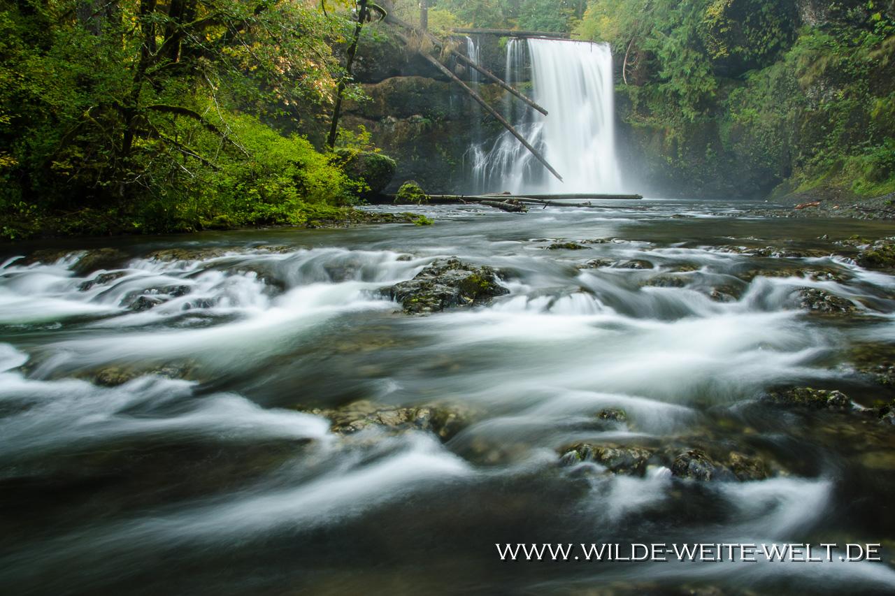 Upper North Falls - Silver Falls State Park, Oregon
