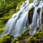 Upper-Proxy-Falls-Three-Sisters-Wilderness-Willamette-National-Forest-Oregon-2 Upper Proxy Falls [McKenzie River]